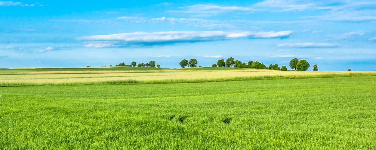 How to Manage Soil From Greenfields Under Ontario's O. Reg. 406/19
